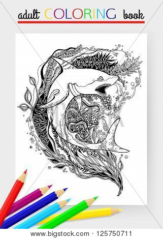 Adult Coloring Page with Shark. Shark vector. Shark isolated. Shark tattoo. Shark vintage. Shark book illustration. Vector illustration.