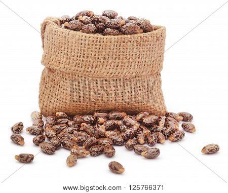 Castor beans in jute sack over white background