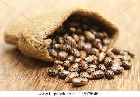 Castor beans in jute sack on wooden surface