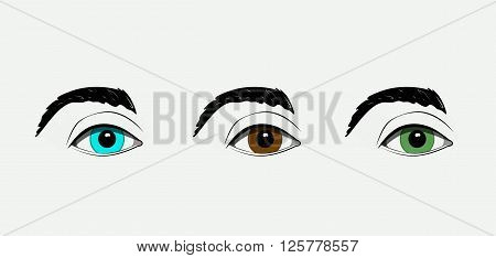 Beautiful human detail color eyes. Vector design.
