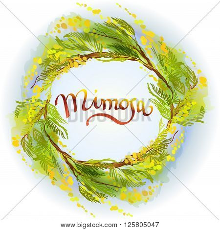 Yellow green mimosa or acacia spring flowers wreath on white blue background. Hand drawn floral yellow round border frame and text mimosa. Sunny watercolor sketch background. Vector illustration.