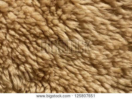Ship Wool Texture.