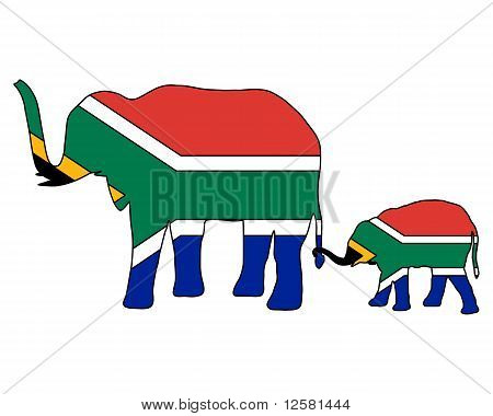 Detailed and colorful illustration of south African elephants poster