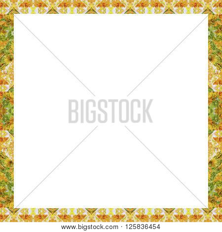 Indian Stylized Floral Stripes