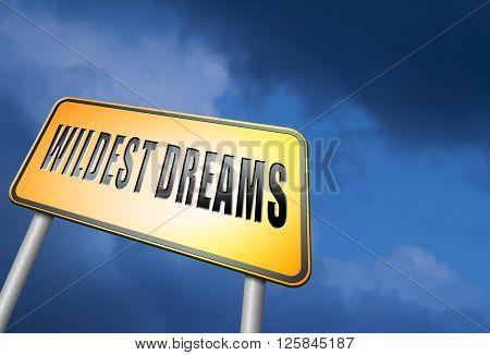 Wildest dreams make dreams come true realize your ambition