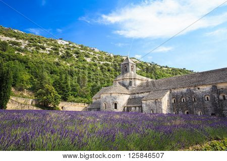 Beautiful landscape lavender field and an ancient monastery abbey Abbaye Notre-Dame de Senanque in Vaucluse, France