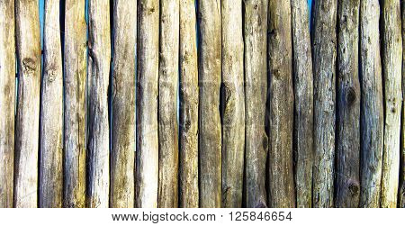 Palisade stockade palings logs. Abstract background old ancient.