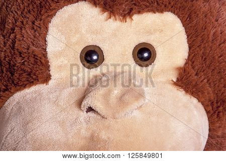 close-up view of eyes and nose and textures of toy monkey