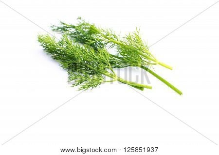 a bunch fresh dill on white background