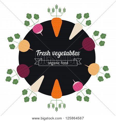 Turnips daikon radish carrot vegetables illustration. Healthy Organic vegetarian food.