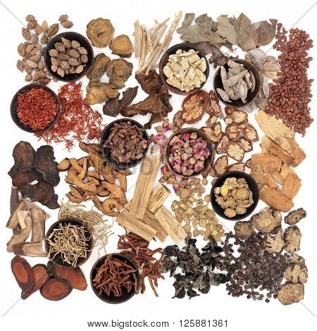 Chinese herb selection used in traditional herbal medicine over white background.