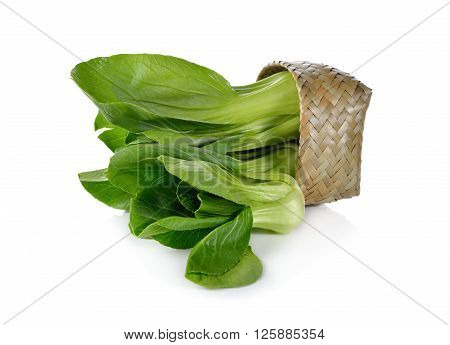 fresh baby Bok choy (Chinese cabbage) in bamboo basket on white background