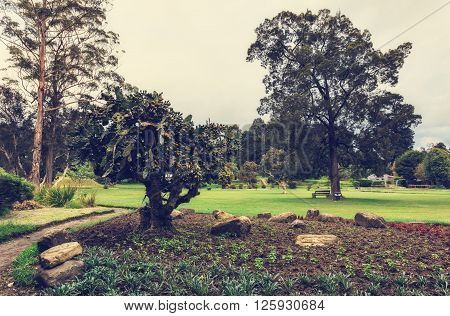 Nuwara Eliya, Sri Lanka. Queen Victoria Park. Victoria Park is located in the heart of the alpine resort of Nuwara Eliya - the