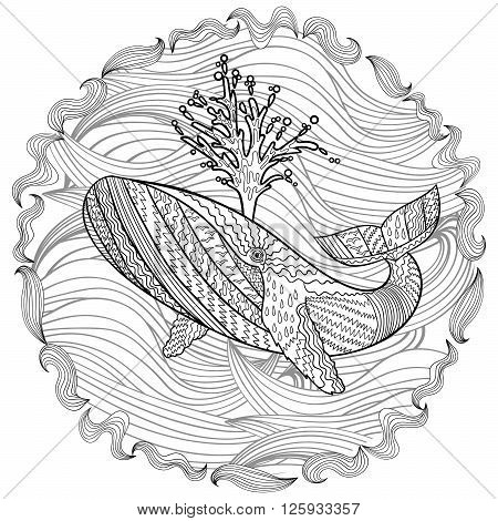 Hand drawn humpback whale in the waves for anti stress Coloring Page with high details, isolated on pattern background, illustration in zentangle style. Vector monochrome sketch. Marine collection.