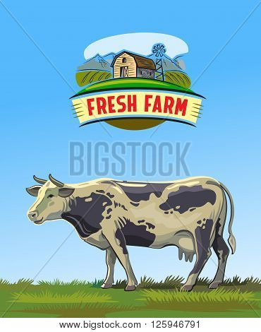 vector color cow and farm on white background