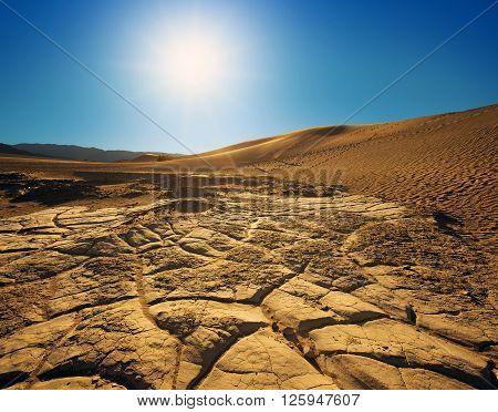 mesquite flat sand dunes in the sunlight
