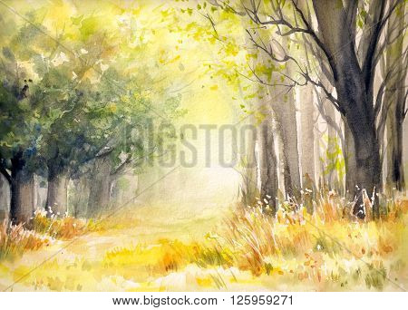 Sunny summer forest. Picture created with watercolors.