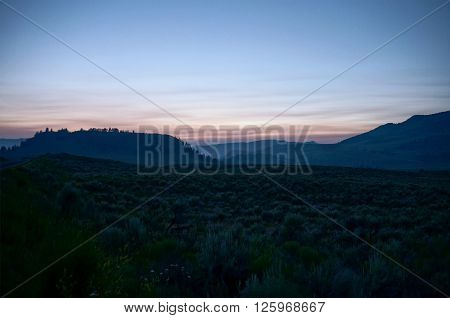 A hilly landscape was photographed in the dusk. The plants and hills contain bluish colors which creates a spooky mysterious atmosphere. The effect is increased by the blurred plants in the foreground.