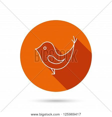 Bird with beak icon. Cute small fowl symbol. Social media concept sign. Round orange web button with shadow.