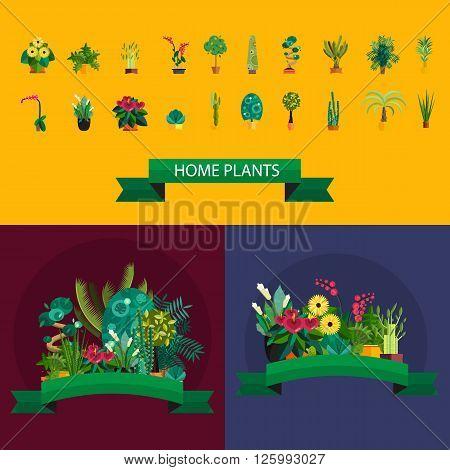Vector Set of indoor plants in pots. Illustration of floor trees homeplants for interior. Plants for home decoration. Potted tree homeplants and flowers. Big floor homeplants tree set.