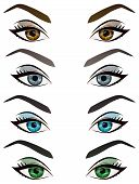 Set of realistic cartoon vector female eyes and eyebrows with different color and make up. Brown blue green grey woman eyes and brows design element body parts isolated on white background poster