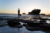 Vrikshasana tree pose from yoga by woman silhouette on sunset near Tanah lot temple poster