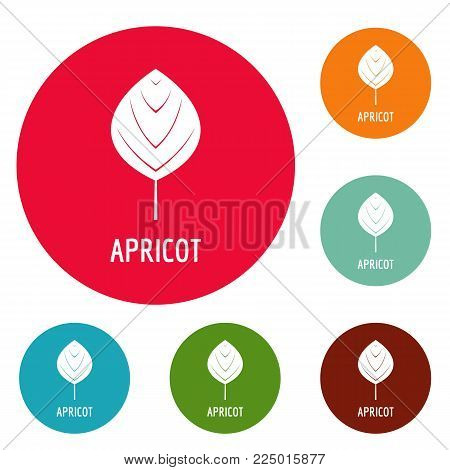 Apricot leaf icons circle set vector isolated on white background