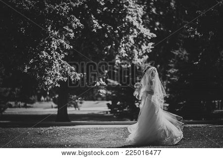 Black and white phoro beautiful brunette bride on a walk in park.