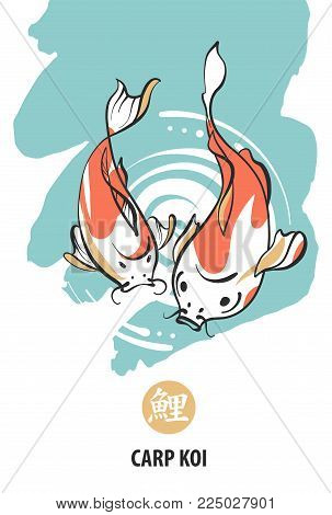 Fish Carp Koi. Vector & Photo (Free Trial) | Bigstock