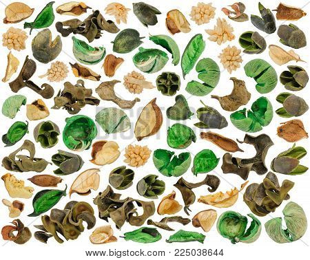 Parts of content from aromatic sachet of colored dried parts of spicy herbs at various angles isolated on white background