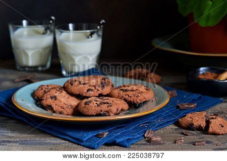 Homemade chocolate chip cookies with chocolate in a plate with milk on a background with a flower in a flower pot. Food background.
