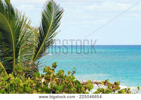 A beautiful image of a tropical beach scene on the island of Eleuthera in the Bahamas.  Please note the ample space for your text.