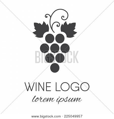 Stylized grapes logo. Wine or vine logotype icon. Brand design element for organic wine, wine list, menu, liquor store, selling alcohol, wine company. Vector illustration.