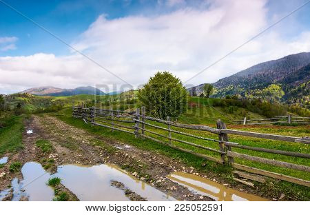 country road through mountainous rural area. beautiful springtime scenery with agricultural fields and grassy slopes