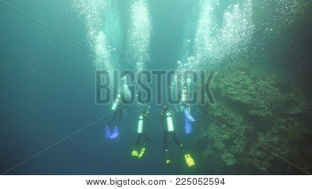 Scuba divers explores underwater coral reef and watching the fish.Scuba diver underwater in a tropical sea.Tropical fish on a coral reef. Diving and snorkeling in the tropical sea.