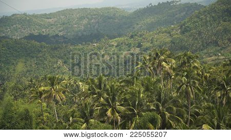 Mountains with rainforest covered with green vegetation and trees on the tropical island, landscape. Mountains and hills with wild forest, sky clouds. Hillside rainforest and jungle. Philippines, Cebu.