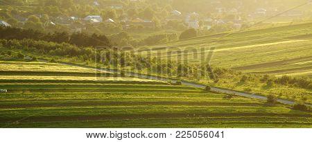 Rural summer landscape on green farm hills