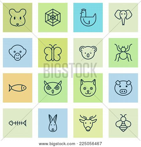 Zoo icons set with bee, cat, pig and other bumblebee elements. Isolated vector illustration zoo icons.