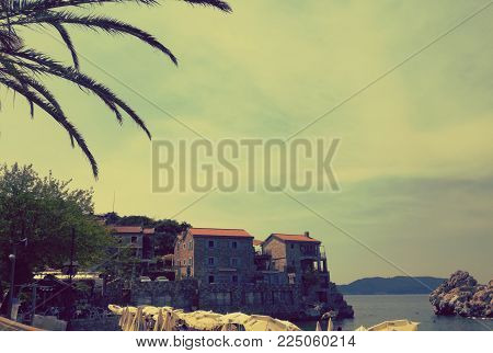 Palm tree and amazing small city Przno, Montenegro. Place with history . Combinatio of history and enjoyment.