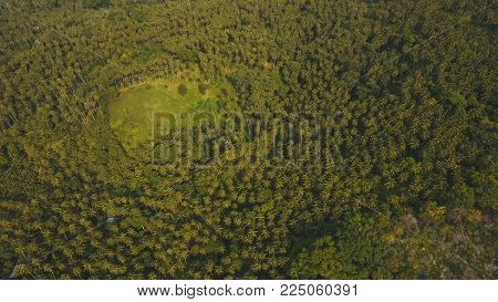 Rainforest covered with green vegetation and trees in the mountains on the tropical island. Aerial view: Mountains and hills with wild forest. Hillside rainforest and jungle. Mountains with sky clouds. Philippines, Camiguin.