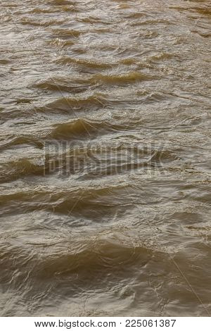 Wild river at high tide water level