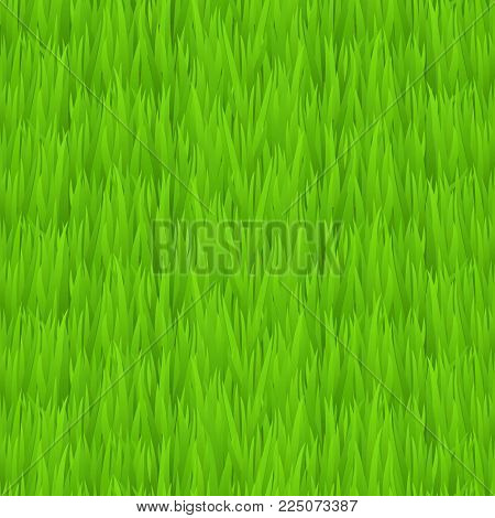 Seamless green grass texture. Tileable early spring green grass background. Vector illustration