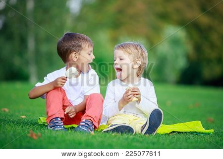 Two young boys eating ice cream and sticking tongues out while sitting on grass in park
