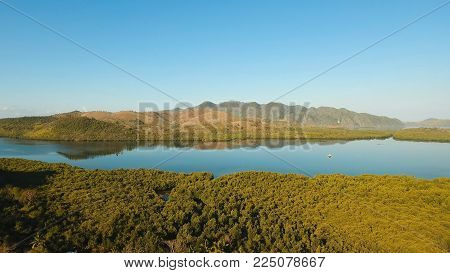 Tropical landscape, at sunrise time with mountains, tropical forest, bay, mangrove forest. Aerial view Seashore with jungle. Coron, Philippines, Palawan, Busuanga. Travel concept