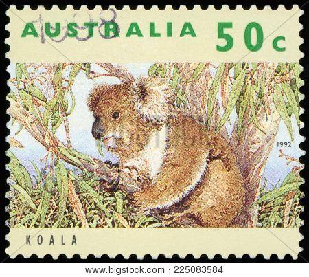 AUSTRALIA - CIRCA 1992: A used postage stamp from Australia, depicting an image of a Koala, circa 1992.