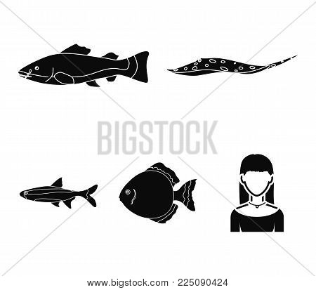 Angelfish, common, barbus, neon.Fish set collection icons in black style vector symbol stock illustration .
