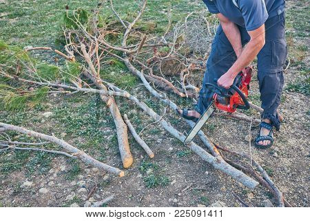 A man is sawing wood with an electric saw. Harvesting firewood for the stove and fireplace.