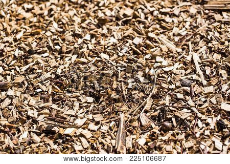 Wood chips in detail in the garden