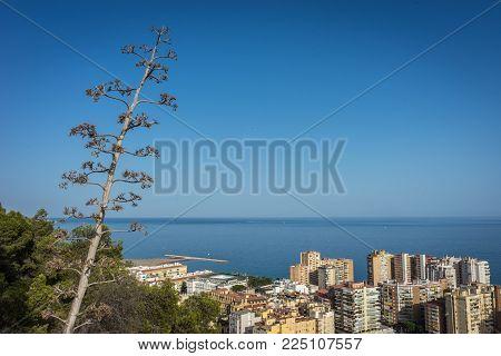 City Skyline Of Malaga Overlooking The Sea Ocean In Malaga, Spain, Europe