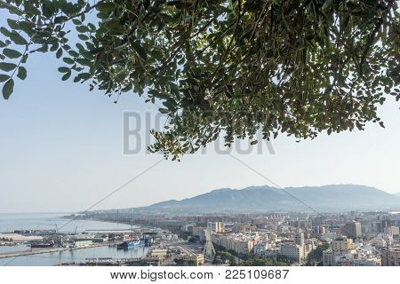 City Skyline Of Malaga Overlooking The Sea Ocean And Hill In Malaga, Spain, Europe On A Bright Summe